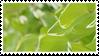 leaf stamp 2 by taishokun