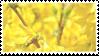 tree? stamp by taishokun