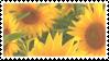 sunflower stamp