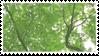 tree stamp 2 by taishokun