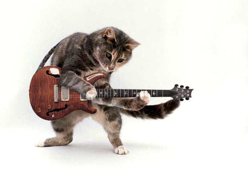 Cat Guitar by Archaic-Artist