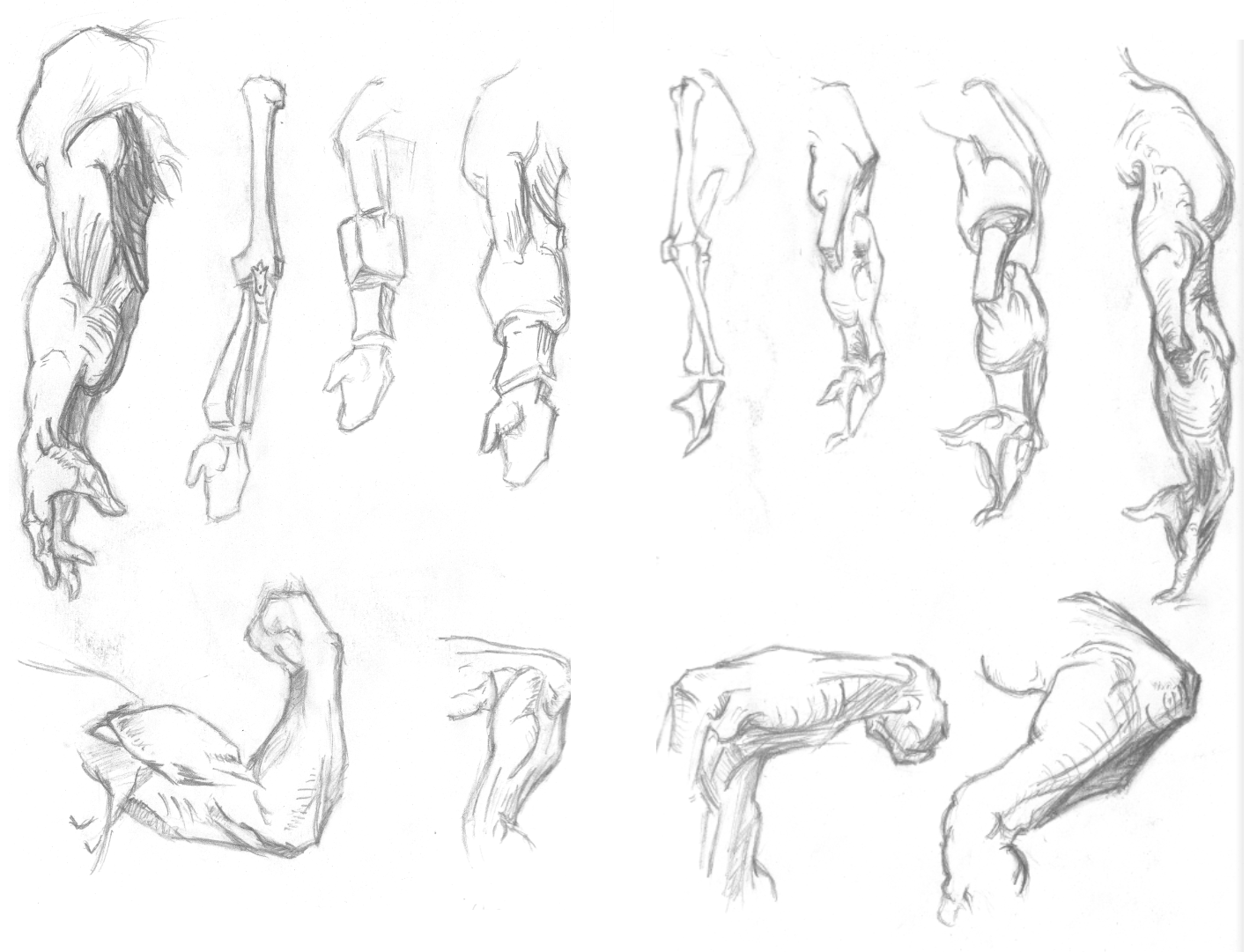 Arm sketches by StokesworthSteele on DeviantArt Arm Muscles Drawing