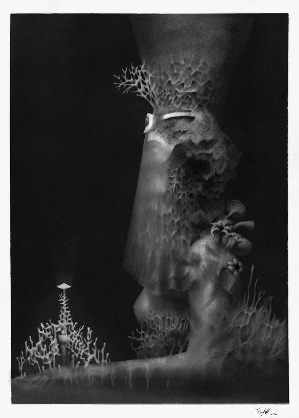 Untitled by Methuselah3000