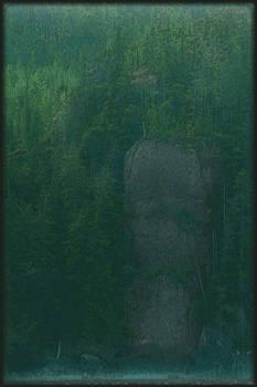 Stone Outcrop