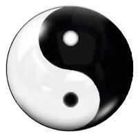 Little Yin Yang by dominik23