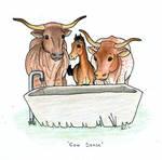 Cow Sense