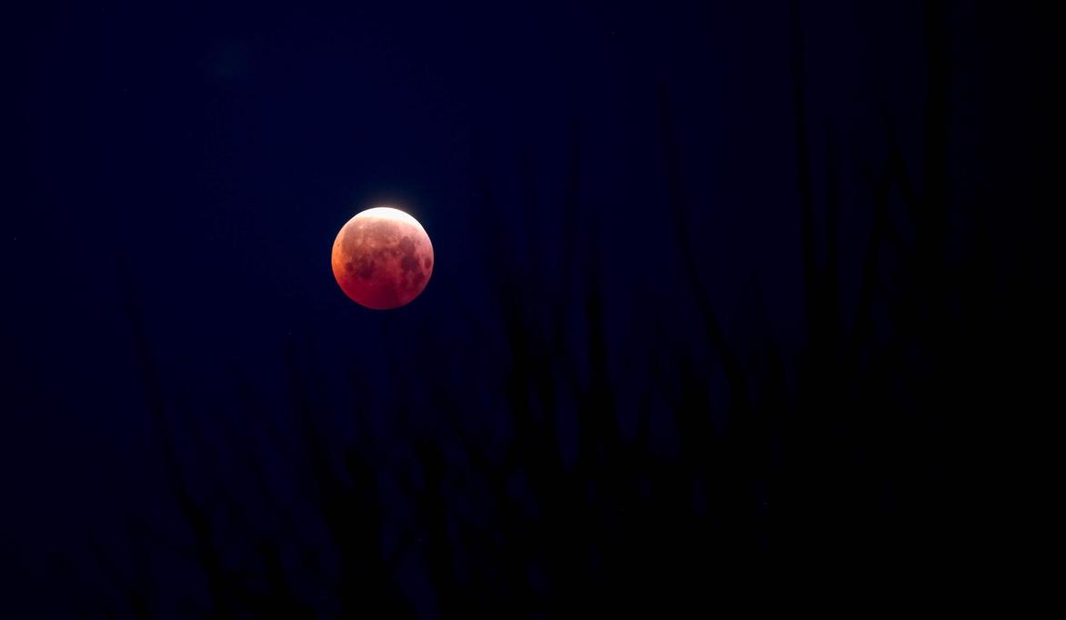 Blood Moon by Ericseye