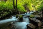 Millcreek Canyon,