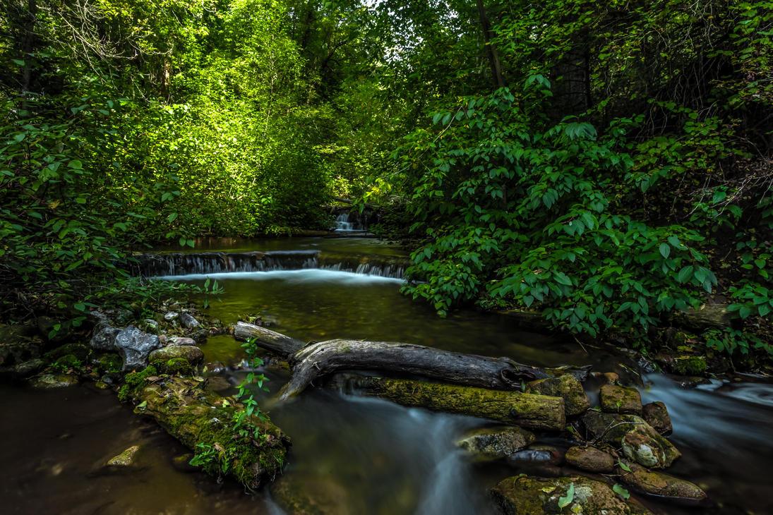 Millcreek Canyon by Ericseye