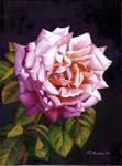 Pretty and pink by LukreziaMonika
