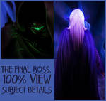 100 details - The Final Boss by hairama