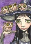 An Abundance Of Owls