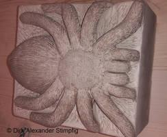 Spider Spinne Sandstone Sandstein with W.I.P-Video