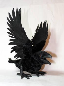 Raven Jenya