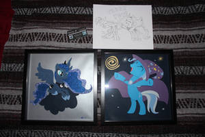 Luna And Trixie Shadowboxes