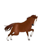 Tango YHH by EquestrianJade