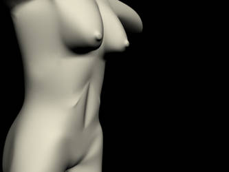 Torso Preview 2 by ILL-FATED-USHER