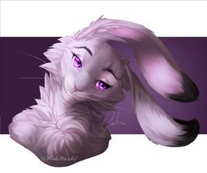 Long ears by Yukitashi