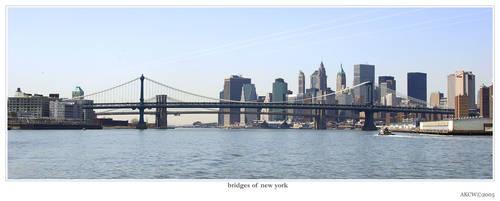 bridges of new york
