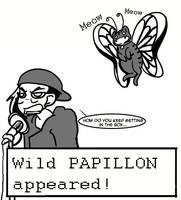 Papillon used 'Needy' by Warlord-of-Noodles