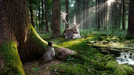 Forest Dream by MachiavelliCro