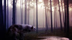 Wild Spirit by MachiavelliCro