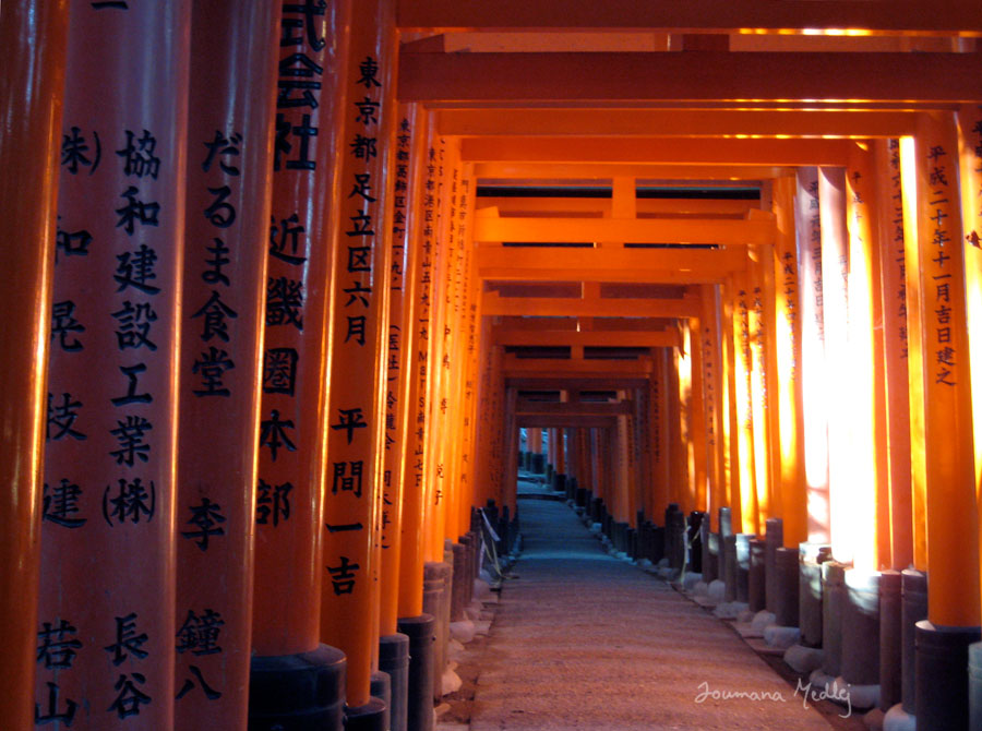 Inari Awakening by Majnouna