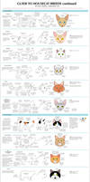 Guide to Housecat Breeds 2 by Majnouna