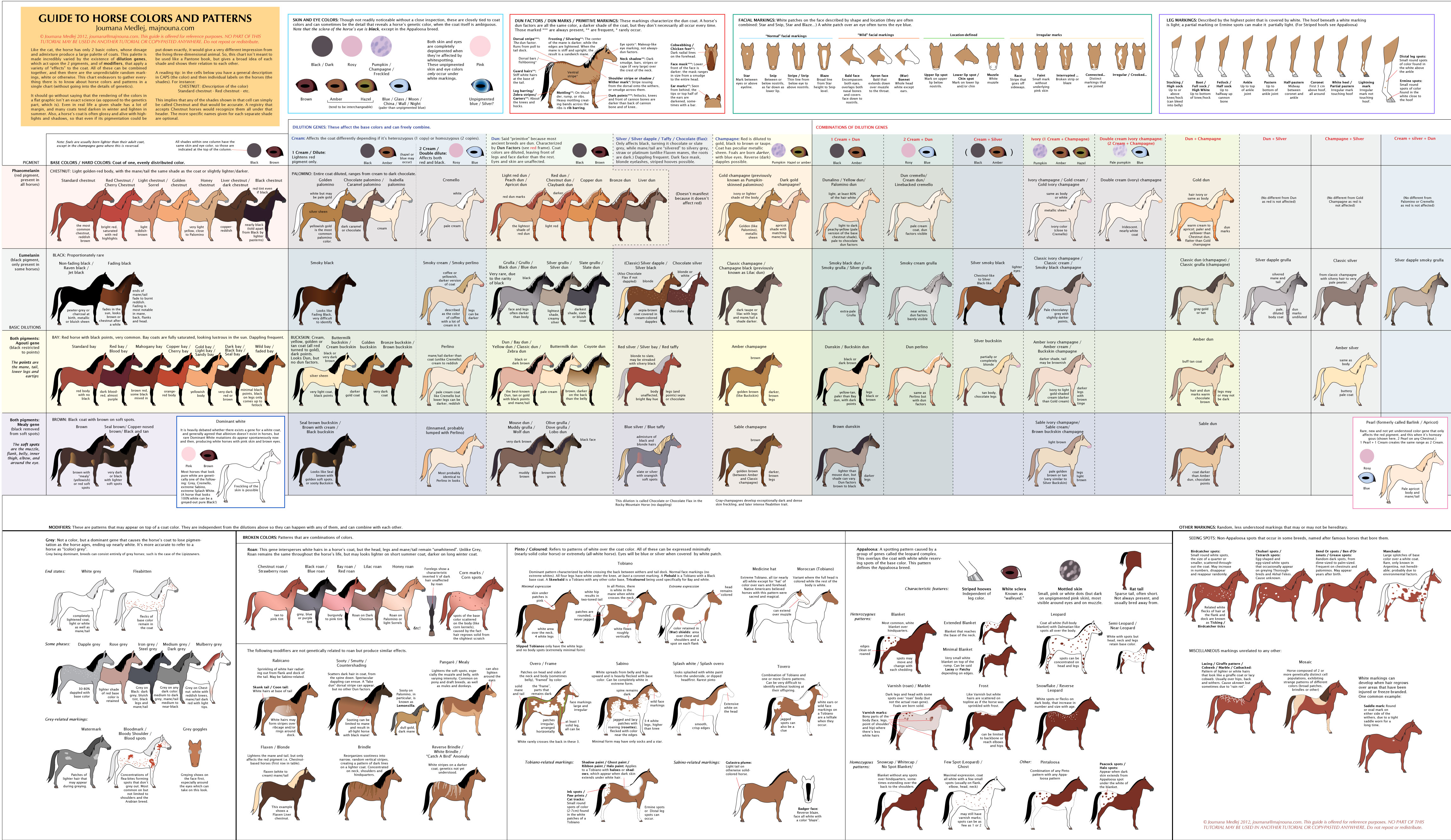 Unique Color Names guide to horse colors and patternsmajnouna on deviantart