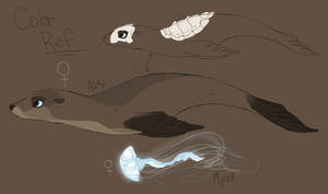Niki and Myrek Color and Markings Ref