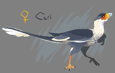 Cari Ref by MBPanther