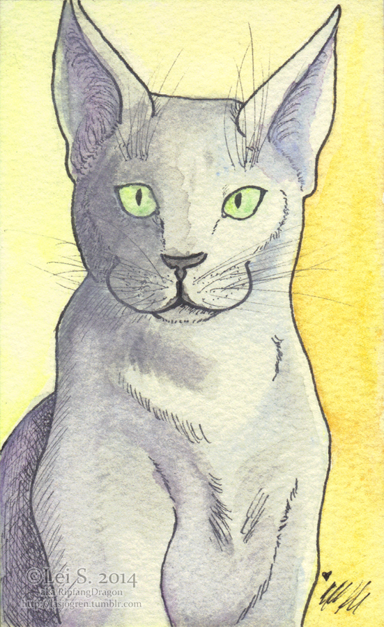Russian Blue by RipfangDragon