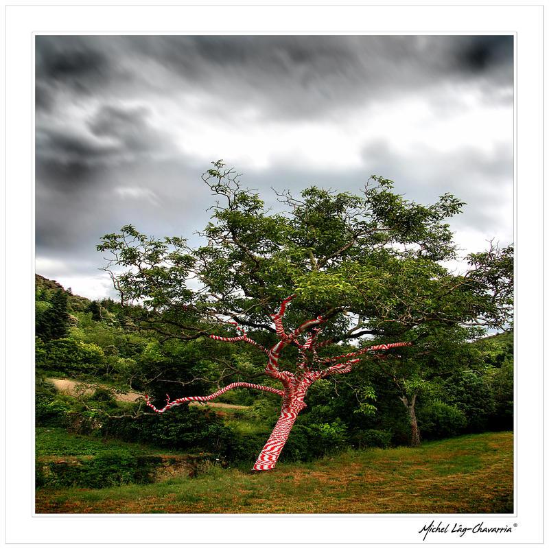 Colour your soul... by Michel-Lag-Chavarria