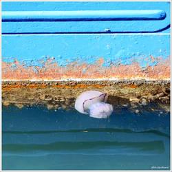 Floating in between...
