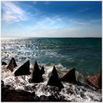 Requins de pierre...