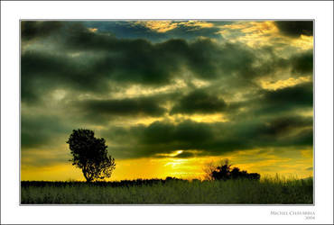 Sun king... by Michel-Lag-Chavarria