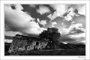 Aupres de mon arbre... by Michel-Lag-Chavarria