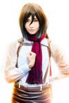 Mikasa Ackerman (Alodia) - II