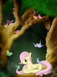 Fluttershy, you are wonderful