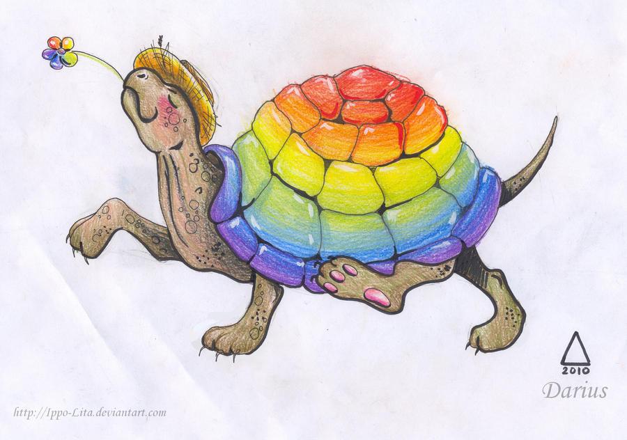 Rainbow Turtle by guitargirl1395 on DeviantArt
