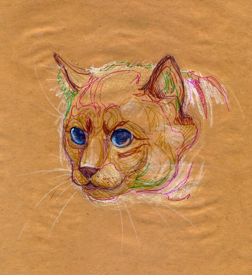 Stray cat by IPPO-Lita