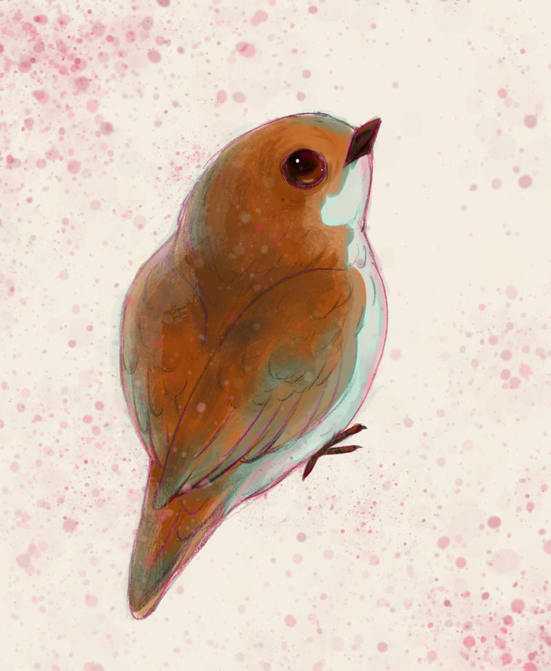 Little birdy by IPPO-Lita