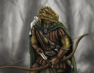 DnD Riclamin the Dragonborn Ranger and marshmallow by BuckMoonArt
