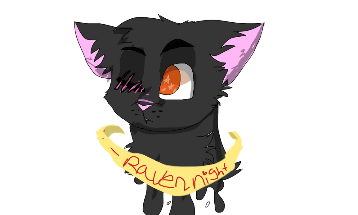 my oc raven night by dasiytheyorkie