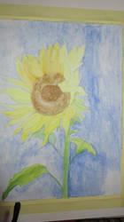 sunflower wip by edxart
