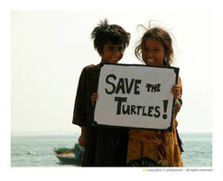 save the turtles by pinkpainter