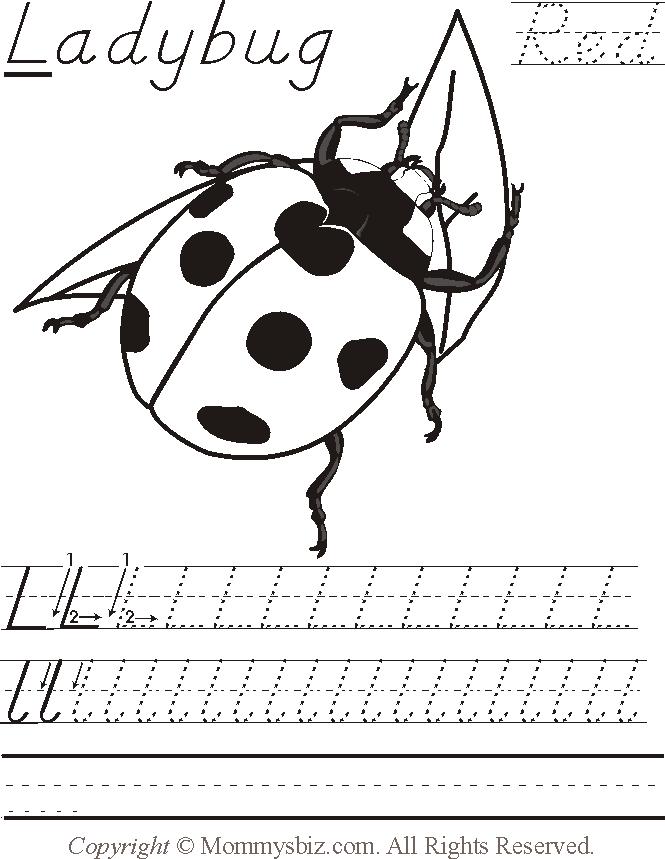 Kindergarten Ladybug Worksheets