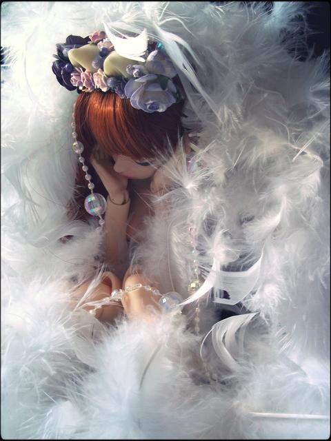 ~ Littlefee/dollzone Eiko [07/11. p14]~  - Page 5 Un_chat_dans_des_plumes_by_aemaeska-d6zwyw7