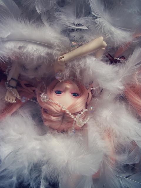 ~ Littlefee/dollzone Eiko [07/11. p14]~  - Page 5 Miss_al__dans_des_plumes_by_aemaeska-d6zwz8v