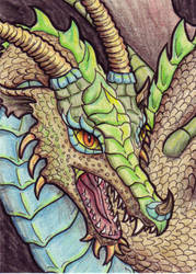 Turquoise and Bronze Dragon by EquusTenebriss